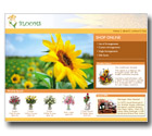 Sample Design - Blooms Florist - Great Web Sites Now .com